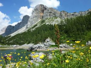 Triglavska jezera_9.7.2012 (69)